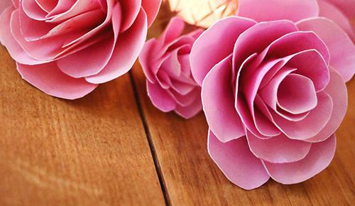 Cách làm hoa giấy.