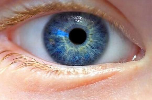 Đôi mắt tiết lộ thông tin về sức khỏe của não bộ.