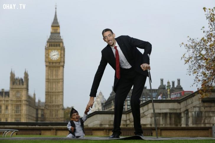 Cuộc hội ngộ của người đàn ông thấp nhất thế giới, Chandra Bahadur Dangi, và người cao nhất thế giới, Sultan Kosen, trong ngày kỷ niệm 60 thành lập Kỷ lục Guiness Thế giới tại London hôm 13/11/2014. Anh Kosen cao đến hơn 2,4 mét trong khi ông Dangi chỉ hơn 54 cm. Ảnh: Reuters