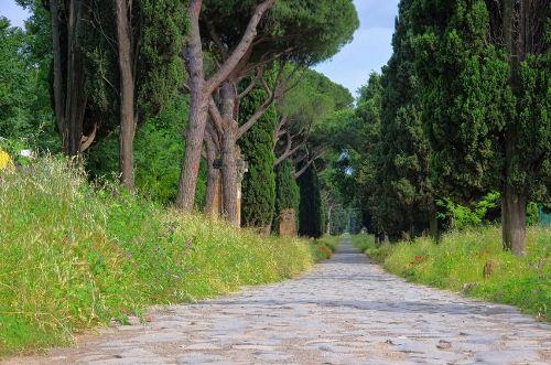 ảnh con đường,đại lộ,đẹp nhất,đường đẹp