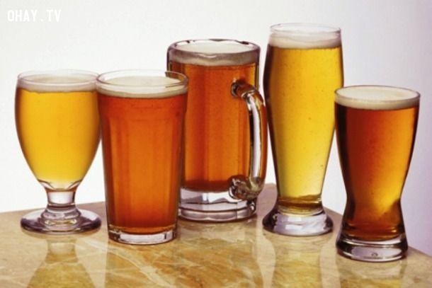 ảnh bia,lịch sử,sự thật,sự thật về bia