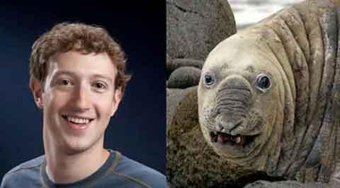 Cười đau bụng với sự tương đồng nét mặt của một số loài động vật và người nổi tiếng