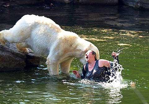 Những vụ thú dữ tấn công người đáng sợ ở sở thú