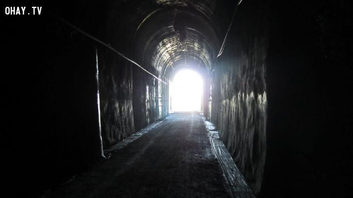 ánh sáng khi chết