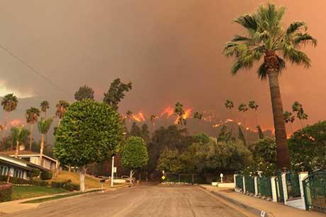 Những hình ảnh báo hiệu môi trường đang bị đe dọa