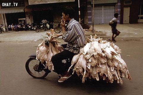Góc ảnh về xe máy Việt Nam đầu thế kỉ XXI của nhiếp ảnh gia Hans Kemp