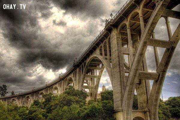 Cầu tự vẫn (California): Dài 457 m, cầu Colorado Street ở Pasadena được mệnh danh là cầu Tự vẫn vì số người đến đây tự tử lên tới 150 người. Phần lớn các vụ tự sát xảy ra vào thời kỳ đại suy thoái. Một trong các vụ nổi tiếng nhất là một người mẹ tuyệt vọng ném con gái qua thành cầu vào ngày 1/5/1937 rồi nhảy theo con. Bà mẹ thiệt mạng, nhưng cô con gái may mắn thoát chết vì rơi xuống bụi cây bên dưới. Cây cầu này hiện vẫn chứng kiến 10 vụ tự tử mỗi năm. Một nghiên cứu của cảnh sát cho thấy, hơn 10% các vụ tự tử của thành phố trong vòng 5 năm qua xảy ra tại cây cầu tuyệt mạng này.