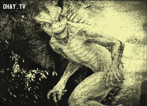 ảnh quái vật,kinh dị,sinh vật lạ