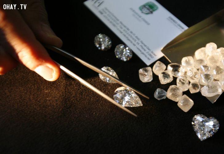 ảnh Kim cương,đá quý,sang trọng,trang sức