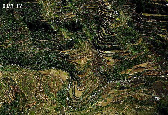 ảnh ruộng bậc thang,ngoạn mục,đẹp nhất thế giới