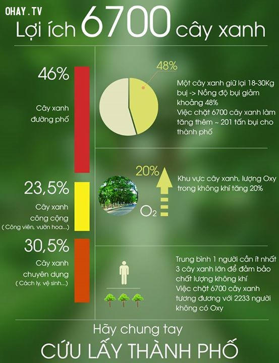 ảnh infographic,cây xanh,6700 cây xanh,lợi ích
