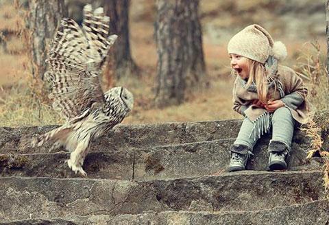 Những bức ảnh về thiên sứ và những động vật hoang dã cực đẹp