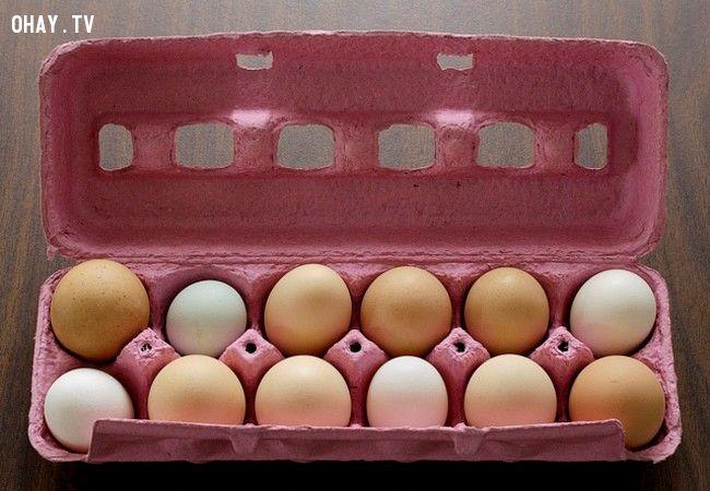 1. Chà dầu thực vật lên trứng trước khi làm lạnh sẽ giữ trứng tươi lâu thêm được 3-4 tuần.