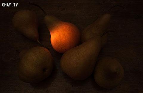 """Chùm ảnh độc đáo \"""" Dark side of the fruit\"""""""