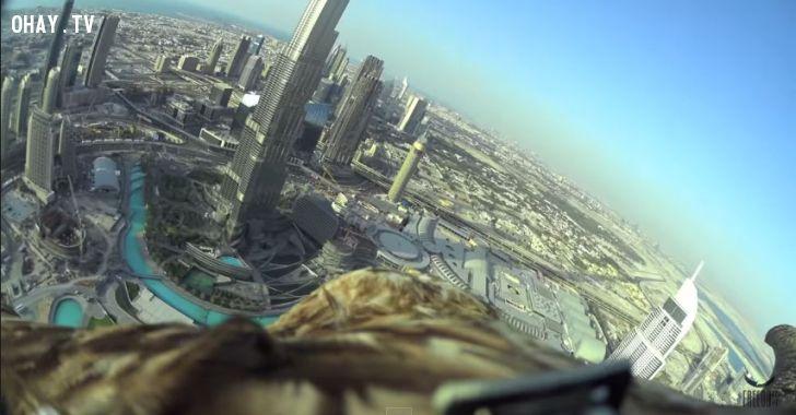 ảnh đại bàng,camera hành trình,Burj Khalifa