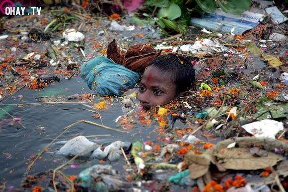 ảnh đói nghèo,bệnh dịch,ô nhiễm môi trường,không có điểm dừng,thực trạng xã hội