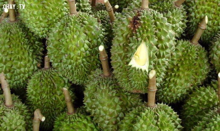ảnh Sầu riêng,Jakarta,Indonesia,trái cây,mùi vị