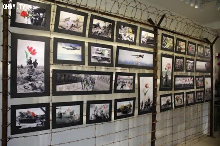 ảnh hoa nơi chiến trường,triển lãm ảnh,chiến tranh,hình ảnh