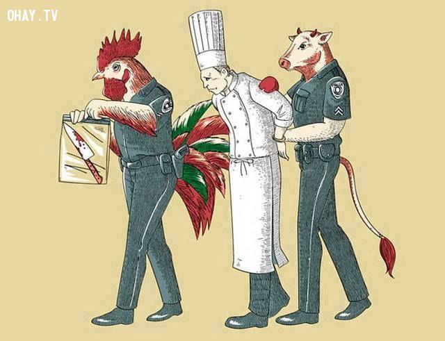 ảnh động vật,con người,cách đối xử với động vật,ý nghĩa,châm biếm