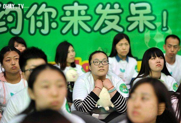 ảnh giấc mơ,dài nhất,Trung Quốc,Apple Watch,giấc mơ dài nhất