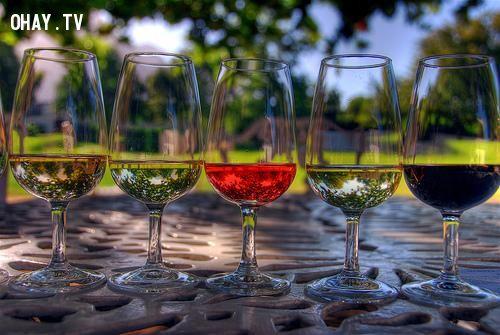 ảnh rượu đỏ,rượu vang,rượu đỏ chữa bệnh,tác dụng của uống rượu,uống rượu