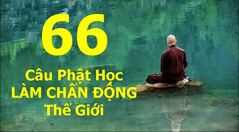 66 câu Phật học làm thay đổi cuộc sống