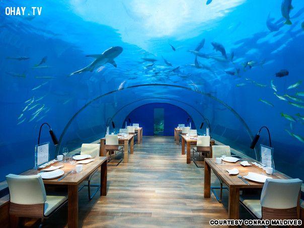 ảnh nhà hàng,kỳ lạ,du lịch,nhà hàng kỳ lạ,nhà hàng phong cách,phong cách lạ,không gian lạ