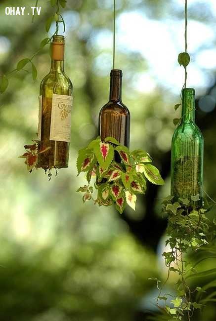 ảnh Tái sử dụng,vỏ chai,tiết kiệm,thân thiện với môi trường