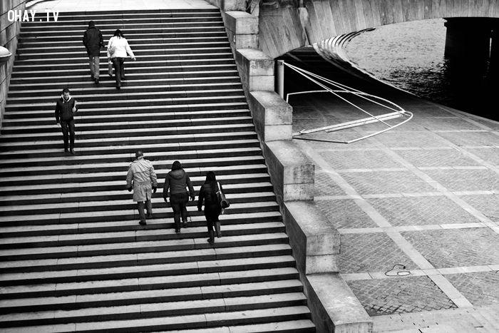 Hãy đi thang bộ mỗi ngày.