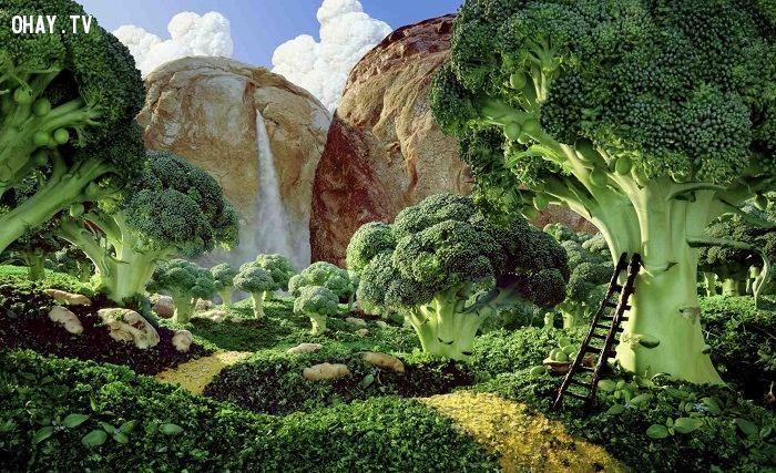 ảnh nghệ thuật,sáng tạo,thực phẩm