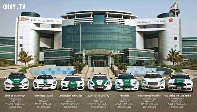 ảnh Dubai,giàu có,xa hoa,khác biệt