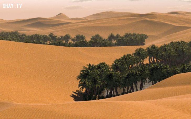 ảnh khắc nghiệt,sa mạc,nóng nhất