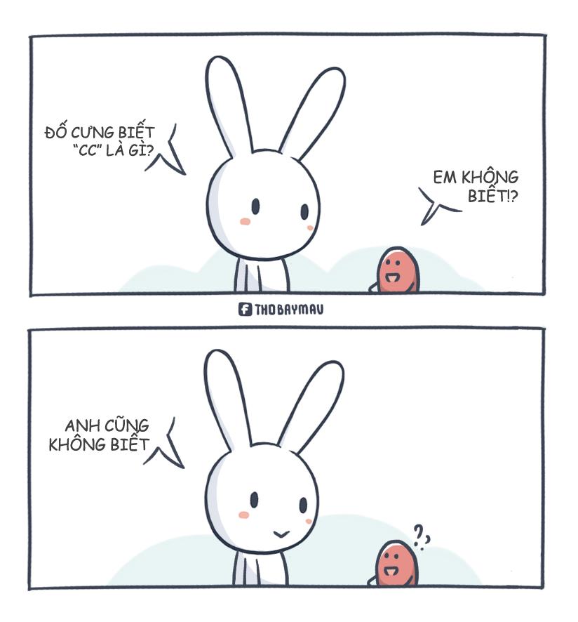 ảnh thỏ bảy màu,hài hước,ảnh hài