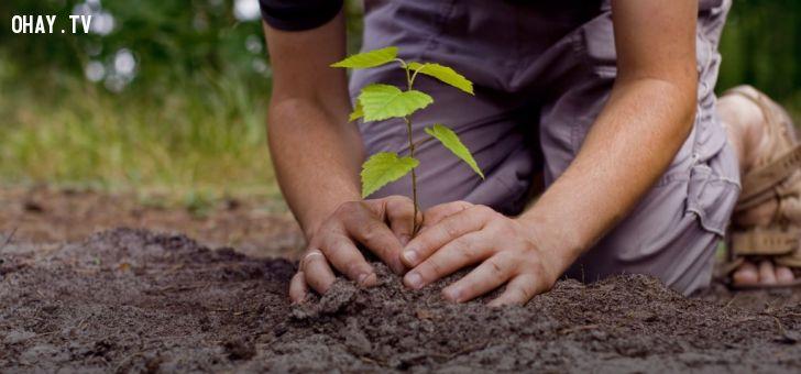 ảnh bảo vệ môi trường,ô nhiễm,tái sử dụng,hành tinh xanh