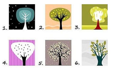 Hãy chọn một cái cây - Ohay TV sẽ đoán tính cách của bạn