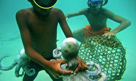 Cuộc sống lênh đênh trên biển của những người không có tổ quốc