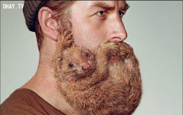 ảnh để râu,để râu rất bẩn,râu bẩn