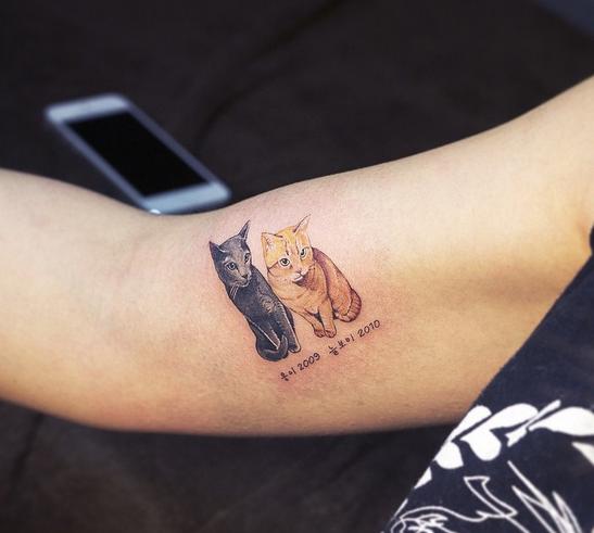 ảnh hình xăm thú cưng,hình xăm mèo,hình xăm