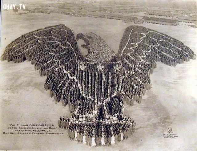 12.500 cán bộ và binh lính tại Gordon xếp thành biểu tượng con đại bàng (năm 1918).