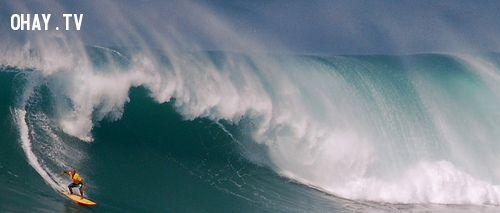 ảnh hawaii,thiên đường,du lịch,giải trí,nhầm lẫn