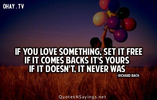 Bài học quý giá từ cuộc sống.