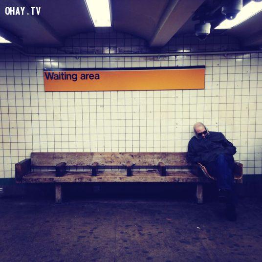 "Ảnh: ""Ghế chờ"", New York"