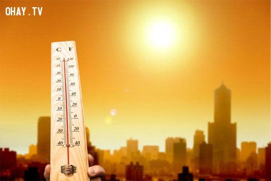 ảnh mùa hè,sức khỏe,những căn bệnh dễ mắc trong mùa hè,bệnh mùa hè