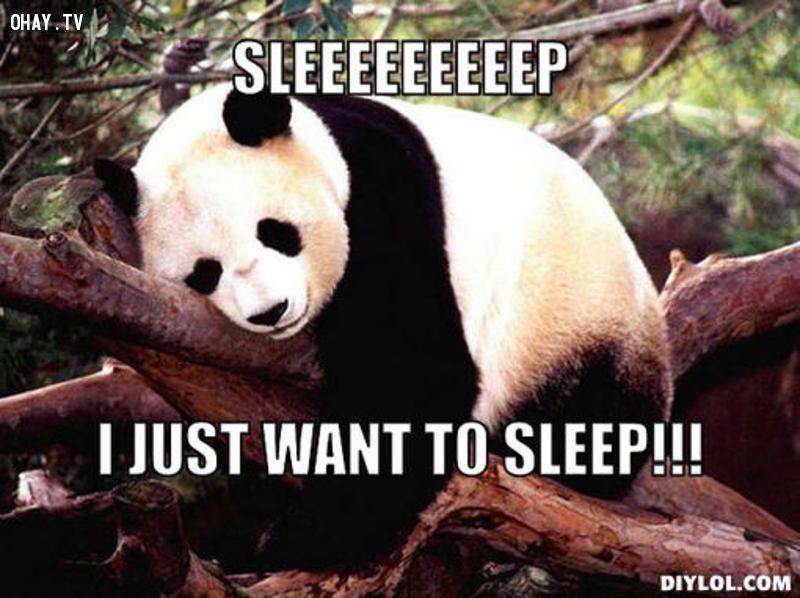 ảnh giấc ngủ,khó ngủ,suy nghĩ nhiều,khó đi vào giấc ngủ