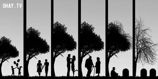 tình yêu đích thực