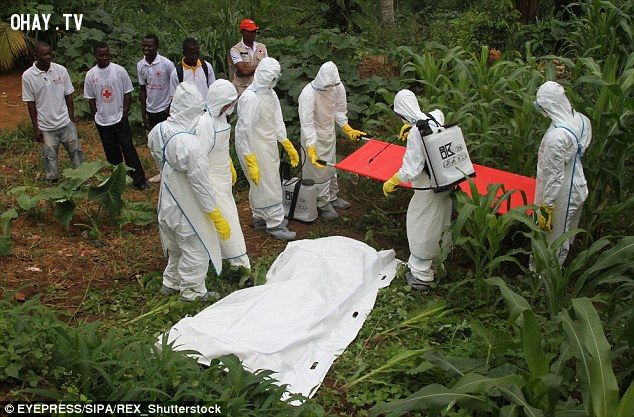 ảnh dịch bệnh,ebola,chết đói,trẻ em châu phi,bệnh dịch