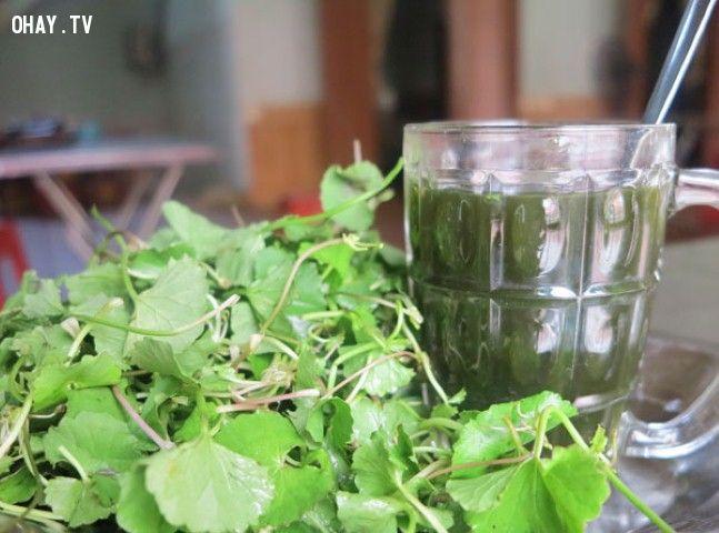 ảnh chữa nhiệt miệng,ăn nhiều rau,nhiệt miệng,cách trị nhiệt miệng,chữa nhiệt miệng đơn giản
