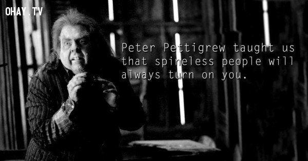 ảnh 30 điều từ Harry Potter,các nhân vật Harry Potter,bài học cuộc sống,harry potter