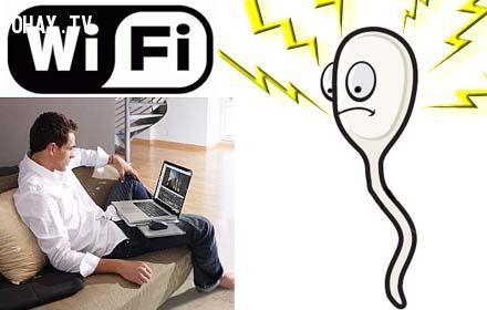 ảnh sóng wifi hại cho sức khỏe,sóng wifi,mặt trái của wifi,wifi,mặt trái của công nghệ,sức khỏe sinh sản