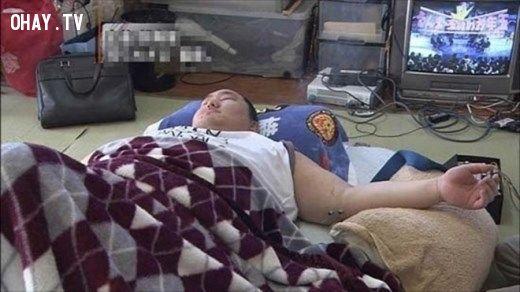 ảnh sumo,sumo nhật bản,đô vật